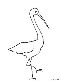 Stork Printable Coloring Pages Stork